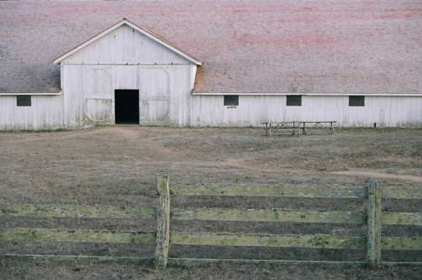 Pierce Point Ranch #11, Inverness, CA, 2014